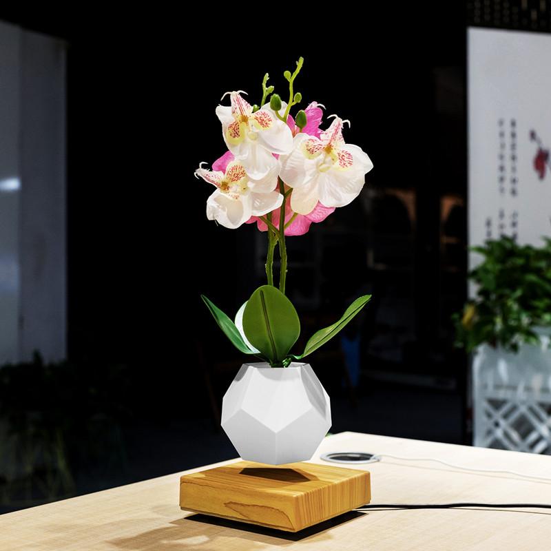 levitación magnética planta flotante maceta aire bonsai PA-0708